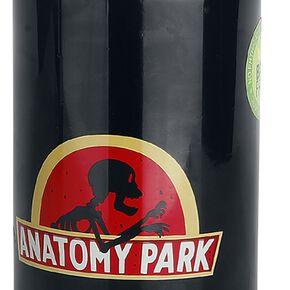 Rick & Morty Anatomy Park - Gourde Bouteille multicolore