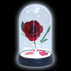 Rose Éternelle Sous Cloche - La Belle et la Bête
