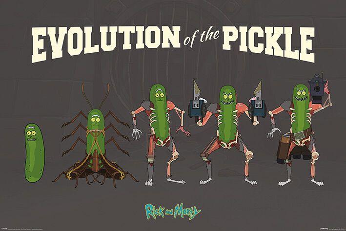 Image of   Rick And Morty Evolution of the Pickle Plakat multifarvet