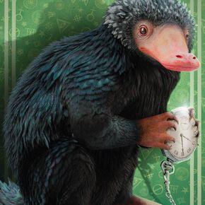 Les Animaux Fantastiques Niffler Poster multicolore