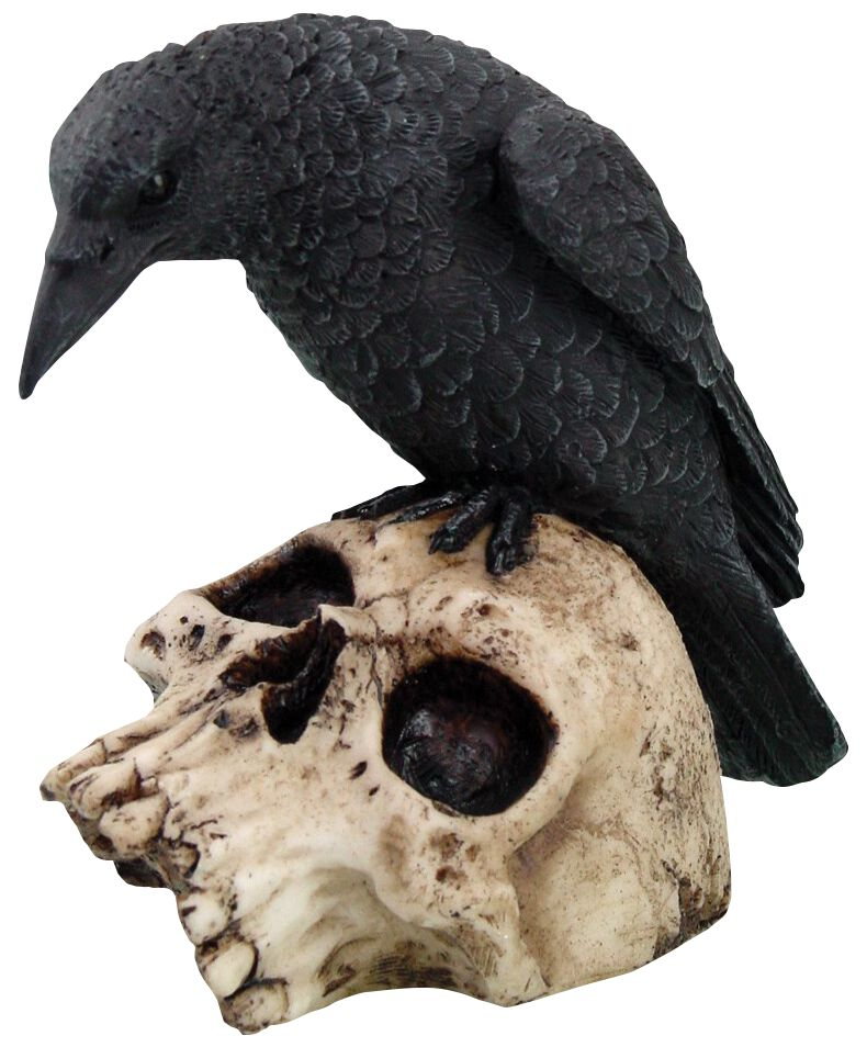 Image of   Nemesis Now Ravens Remains - Rabe auf Totenschädel Figur Standard