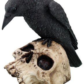 Nemesis Now Ravens Remains - Rabe auf Totenschädel Figurine Standard