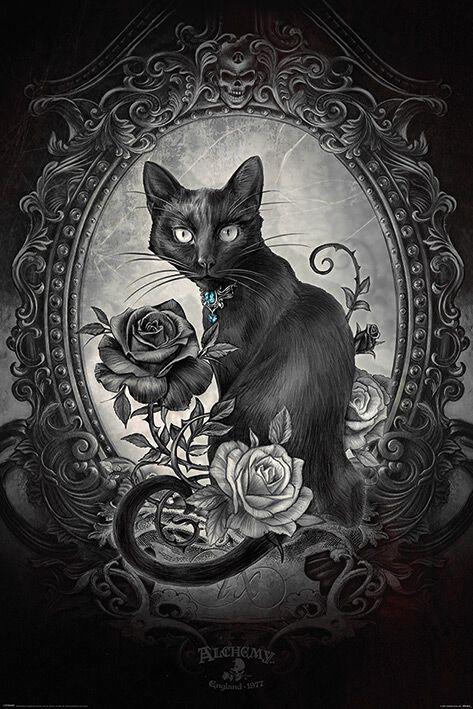 Image of   Alchemy England Parcelsus Plakat sort-hvid