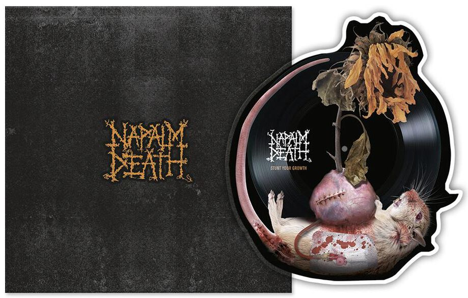 Image of   Napalm Death Stunt your growth 12 inch-Faconplade standard