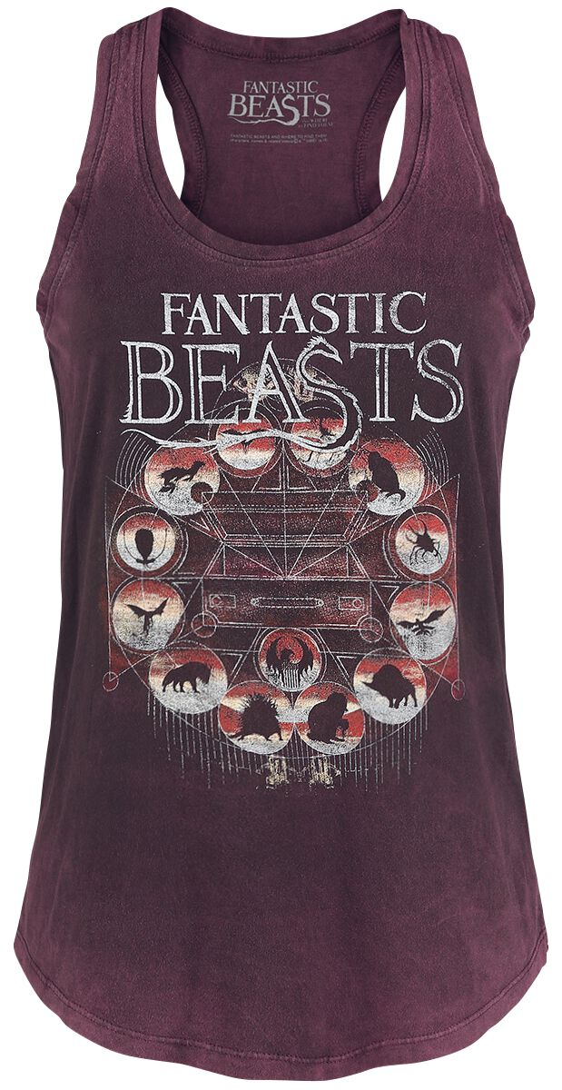 Image of   Fantastic Beasts Magical Congress Girlie top bordeaux