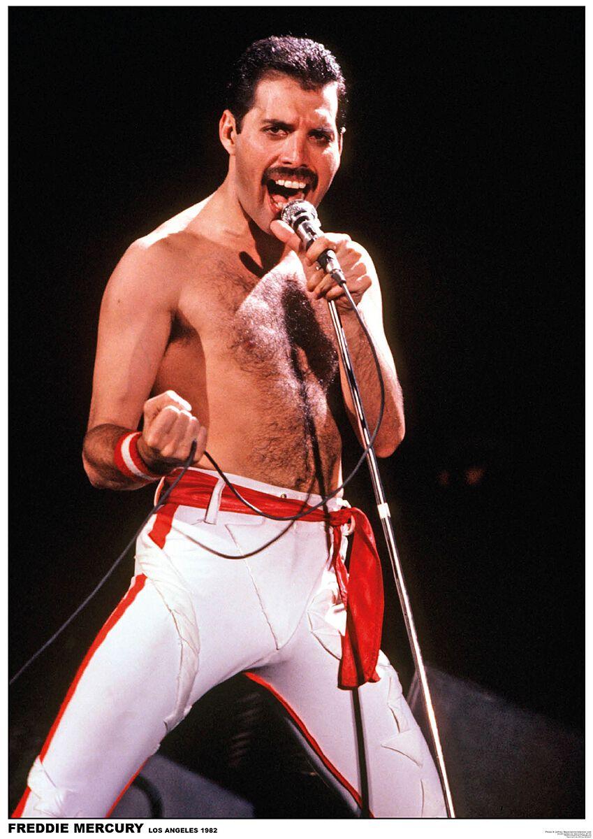 Image of   Queen Freddie Mercury - Los Angeles 1982 Plakat standard