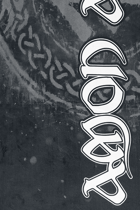 Image of Amon Amarth Logo Badetuch Standard