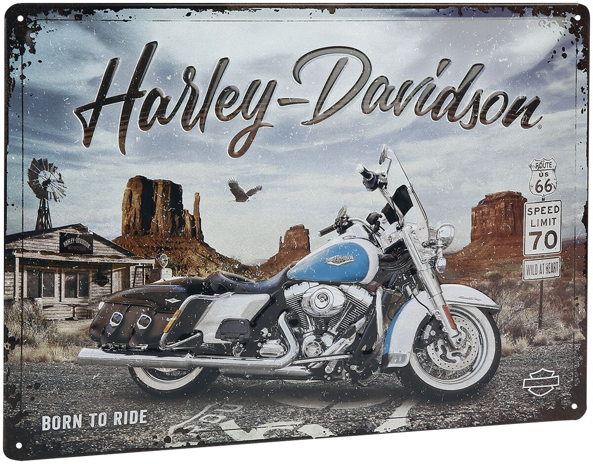 Image of Harley-Davidson Route 66 Road King Blechschild multicolor