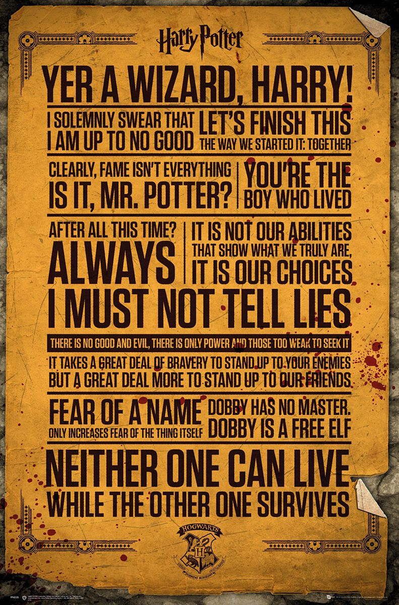 Harry Potter Zitate Poster multicolor FP4235