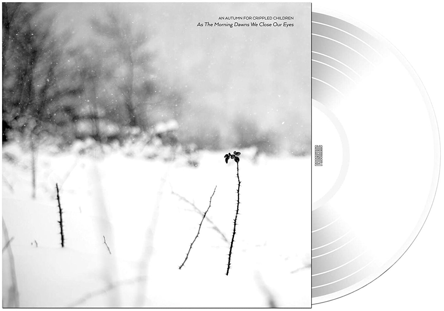 Image of An Autumn For Crippled Children As the morning dawns we close our eyes LP klar