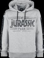 Logo / Jurassic Park / Hooded sweater