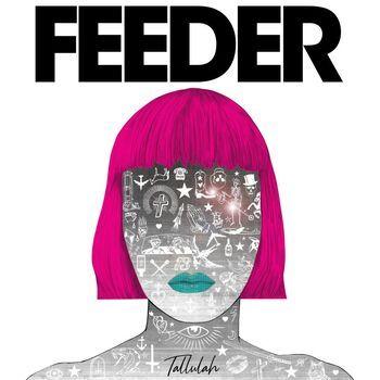 Feeder - Cover